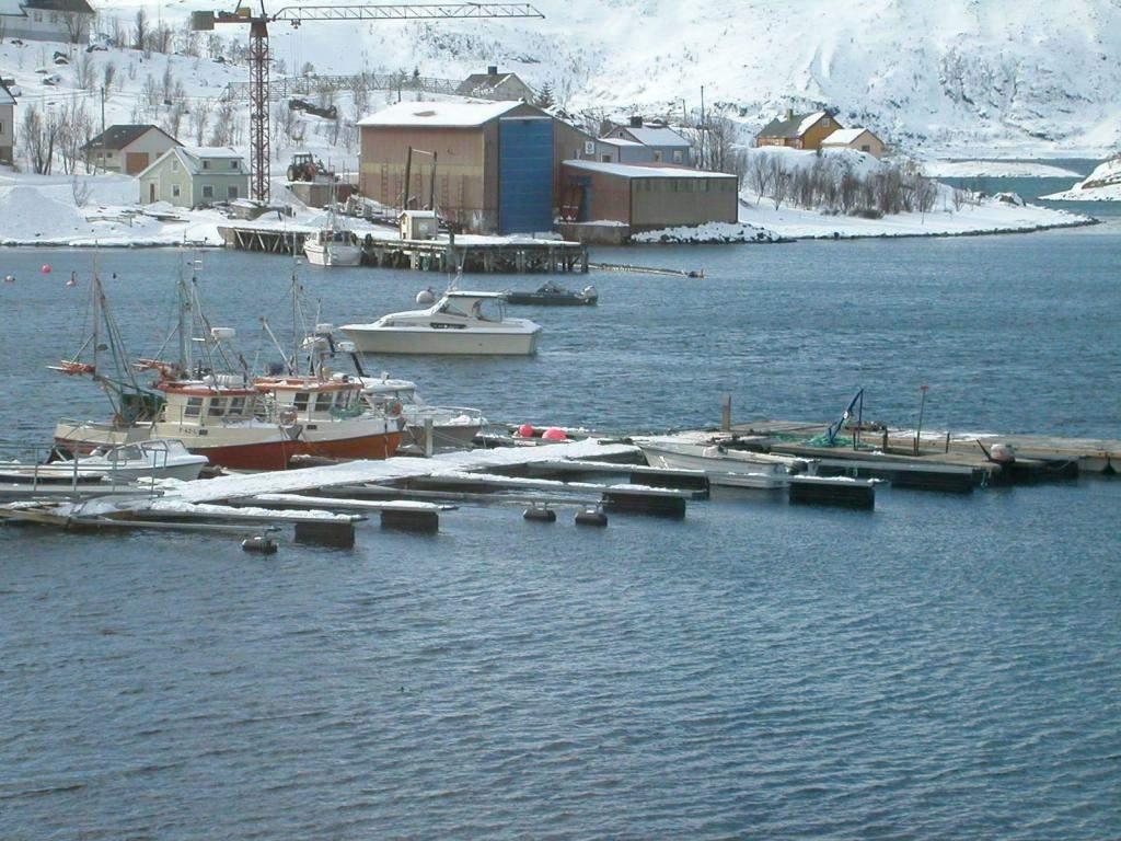 Bergsfjord Loppa kommune