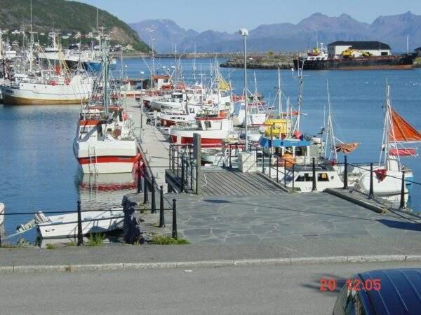 Skjervøy Havn